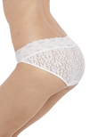 Halo Lace Brief Ivory